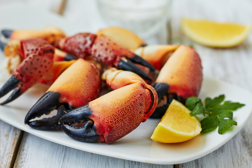 Stone crab claws - Miami